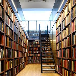Библиотеки Выгоничей
