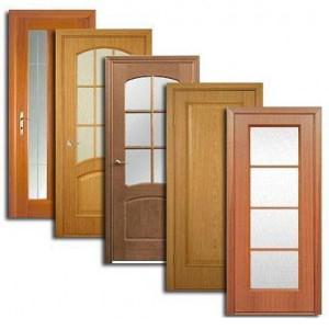 Двери, дверные блоки Выгоничей